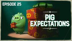 Pig Expectations TC.jpg