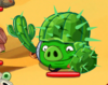 CactusKnight.png