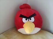 RED BIRD KR