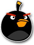 Black Bird Chorme