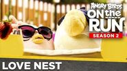Angry Birds On The Run Season 2 Love Nest Special