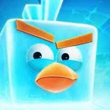 "Ice Bird ""Froshh"".jpg"
