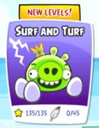 Surfin n turfin