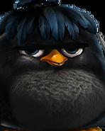 Flocker Black Portrait 043