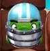 Helmetpig Match