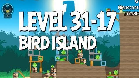 Bird Island 31-17