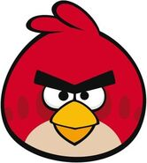 Red Bird Front