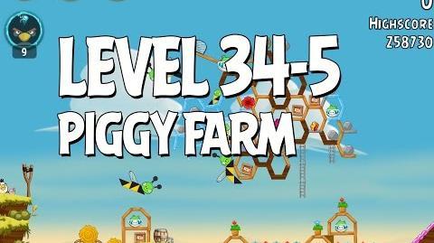 Piggy Farm 34-5