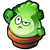 Bonk Choy sprout 1