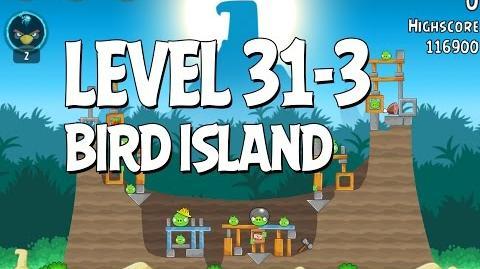 Bird Island 31-3