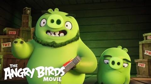 The Angry Birds Movie - Clip What's a Pig?