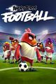 Birdsfootball