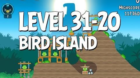 Bird Island 31-20