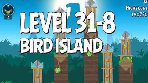 Bird Island 31-8