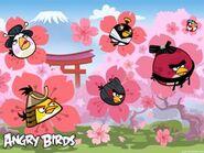 300px-Angry-Birds-Seasons-Cherry-Blossom-02