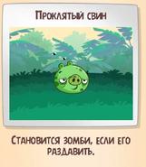 Прокл. свин-3