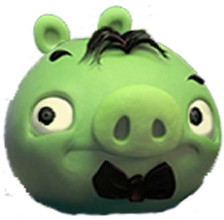 Cerdo Cantante