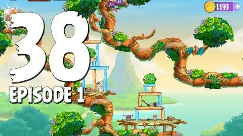 Branch Out Level 38