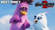 The Angry Birds Movie 2 - TV Spot Meet Pinky