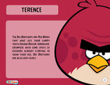 Terence.opis.jpg