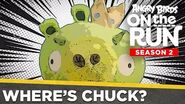 Angry Birds on the Run S2 Where's Chuck? - Ep12 S2