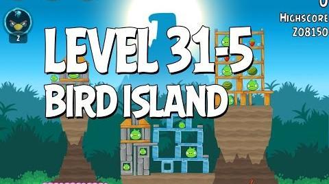 Bird Island 31-5