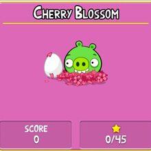 CherryBlossomAB.jpg