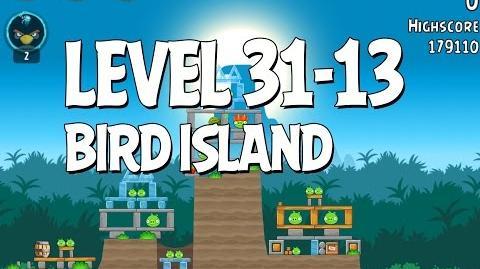 Bird Island 31-13