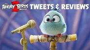 Angry Birds Movie 2 TV spot - Tweets and Reviews