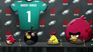 ANGRY NFL