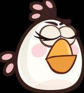 BIRD GREEN BLINK