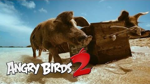 Angry Birds 2 Angry Is Back - Teaser 2
