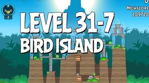 Bird Island 31-7