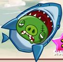 SharkPigWin