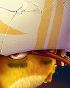 70px-Flocker Yellow Portrait 011