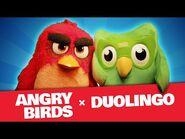 Angry Birds X Duolingo - The Team-Up!