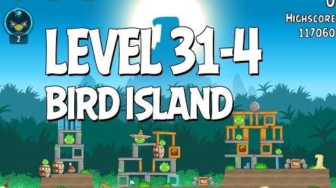 Bird Island 31-4