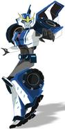 Strongarm TFTRID-Robot
