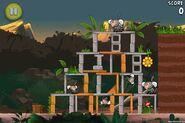 Angry birds rio jungle escape 3