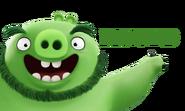 Leonard Angry Birds Movie Character