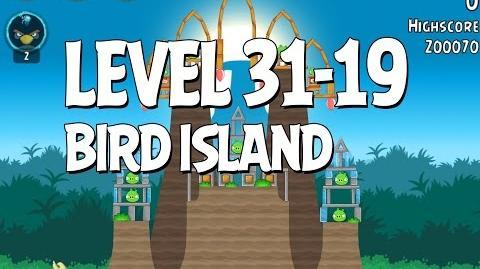 Bird Island 31-19