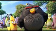 The Angry Birds Movie - Did We Win Clip - Now Available on Digital Download