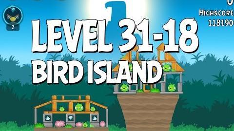 Bird Island 31-18