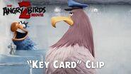 The Angry Birds Movie 2 - New Sneak Peek