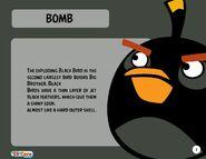 Bomb opis