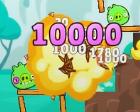 Cerdo Explosivo Angry Birds Friends Explosión
