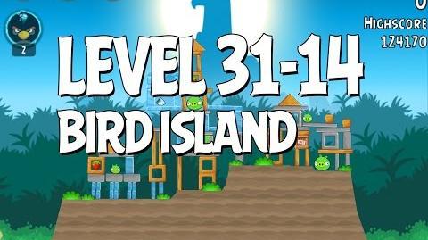 Bird Island 31-14