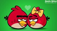 Let's Some Love Birds