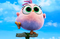 Chick AB2