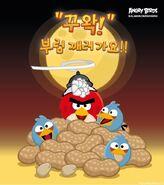 Angry-Birds-Jeongwol-Daeboreum-Teaser
